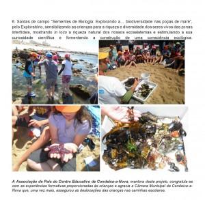 Criancas_Cientistas_ Condeixa_Jornal_Page3